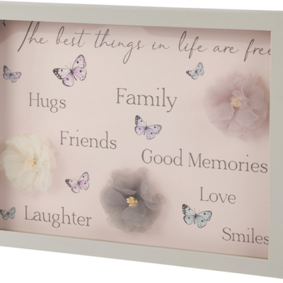 Framed Butterfly and flower plaque